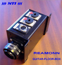 Reamonn Guitar Floor Box